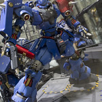 GBWC2014_World_representative_exhibitions-52