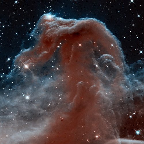 2013: Horsehead Nebula