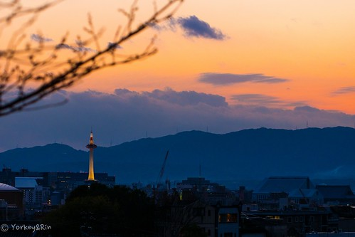 sunset japan town kyoto december olympus 夕景 rin 京都タワー kyototower 2014 12月 京都市 em5 olympusm60mmf28macro pc233093
