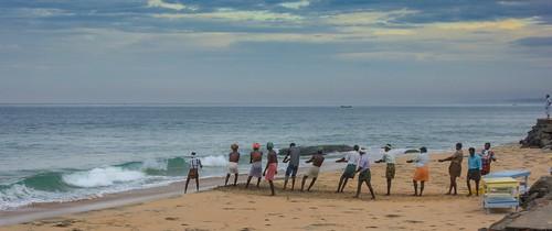 india beach bay fishing fishermen kerala rope anticipation cooperation kovalam arabiansea netfishing tonemapped tamronaf28300mmf3563xrdildasphericalif samudrabeach draggingthenet