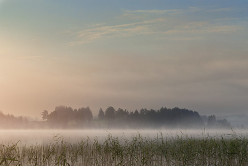 shore lake patajärvi finland suomi fog mist clouds sunrise water trees forest farm color nikon d3100 nikkor 1755mm f28g nature nikonphotography naturephotography landscape landscapephotography outdoor sky