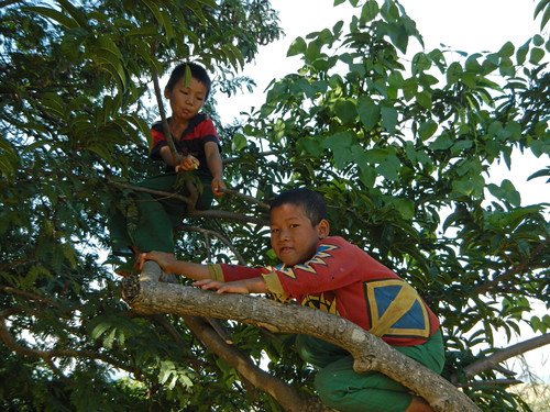 Children playing up in a tree on our Inle Lake trek in Myanmar