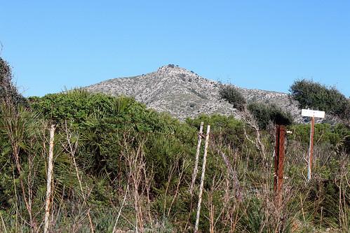 Atalaya de Alcudia