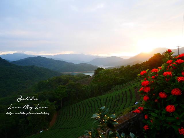 新北石碇景點千島湖八卦茶園 (4)