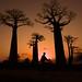 En vélo à Madagascar by Ma Poupoule