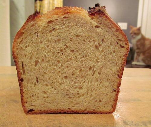 NKSD_Sandwich_4