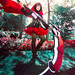 ausa2014-ruby2 by sorairodays Photography