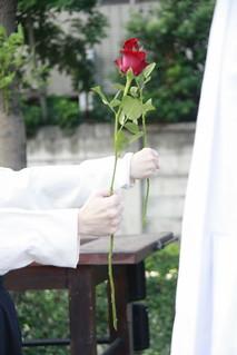 參與者每人手持一朵玫瑰。