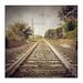 Tracks by pongo 2007