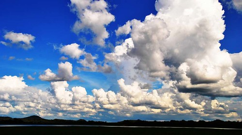 60 Parque Nacional de Minneriya (23)