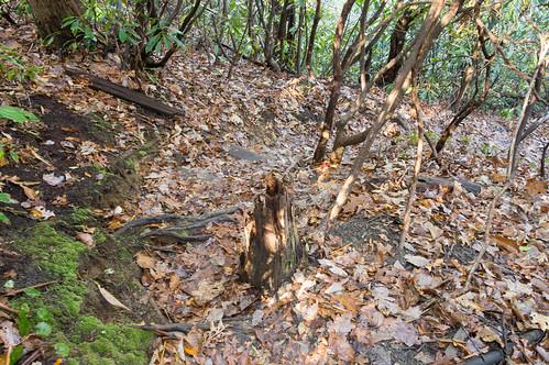 Tom Miller Trail - 5