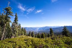 Kings Canyon & Sequoia - 108