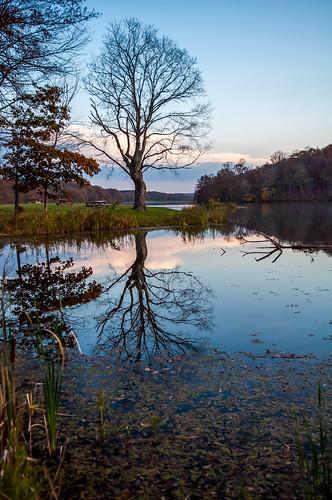 lake reflection indiana yellowwood idnr