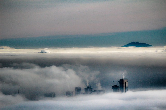 Peek-a-boo 2.....Only the tallest skyscrapers in Vancouver, BC are able to break through the thick fog.