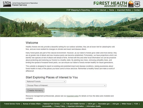 The Forest Health Advisory System welcome screenshot