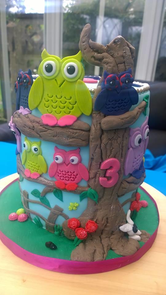 Owl Cake (SK Cakes) by Shushma Leidig