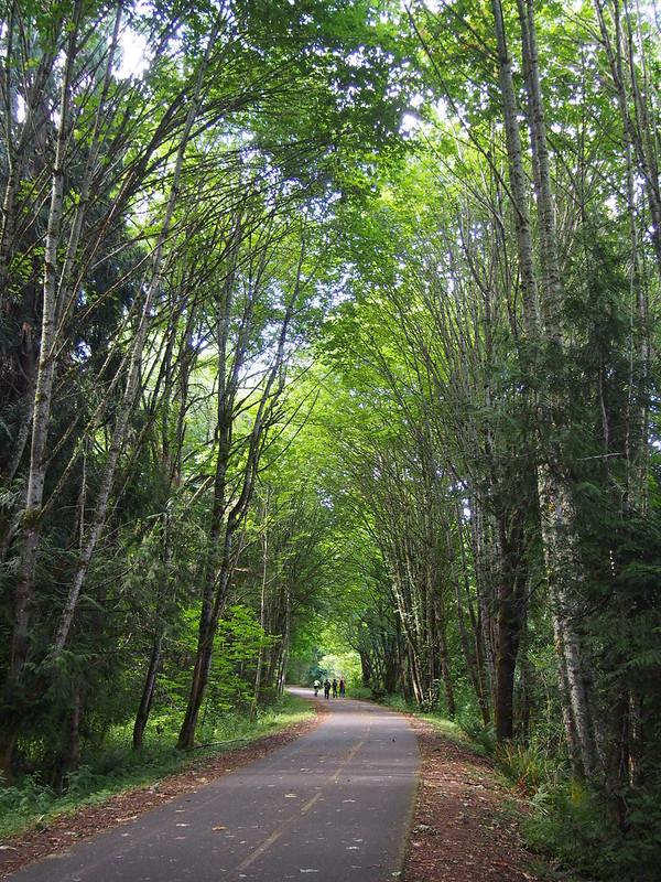Chehalis Western Trail
