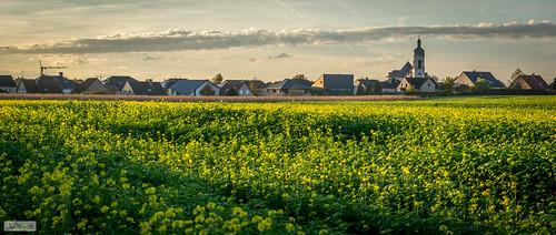 sunset abbey leuven landscape zonsondergang fav20 fav30 3000 kessello vlierbeek abdij fav10