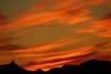 Sunset 11 20 2014 038