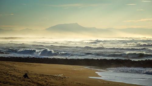 La côte landaise - Capbreton (40)