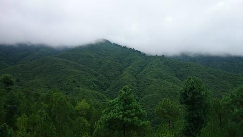 nepal deepgreen subodhphotography