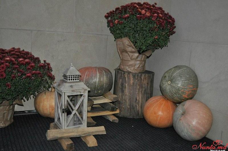 Ideal Decor  > Фото из галереи `CUMATRII`