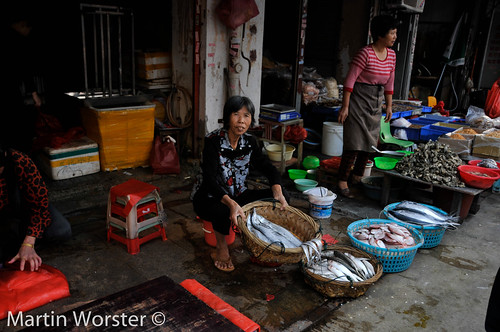 Xiamen Street Market -  More Sea food