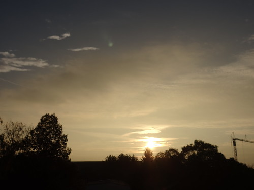 Zum Sonnenaufgang treibt mich auf die Gassen hinaus auf offnes Feld der steinerne Sarg ist jedes Haus 02481