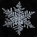 Snowflake-a-Day #15 by Don Komarechka