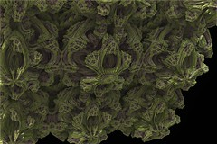 Frischpore