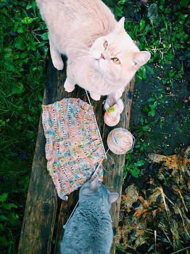 pia k sthlm knitting