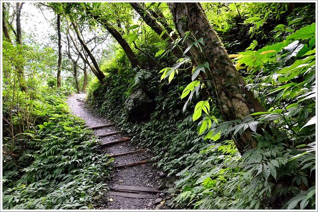 聖母山莊聖母登山步道宜蘭礁溪033-DSC_6791