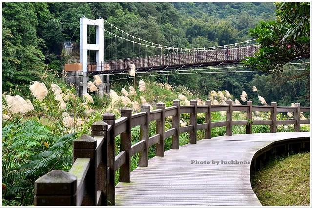 十分瀑布公園眼鏡洞瀑布024-DSC_0636