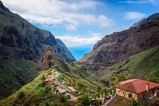 Tenerife Treasure