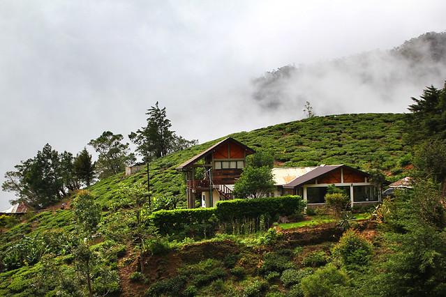 Hill Safari Ecolodge - Ohiya, Sri Lanka