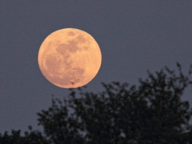Wolf Moon rising 60D 20150104