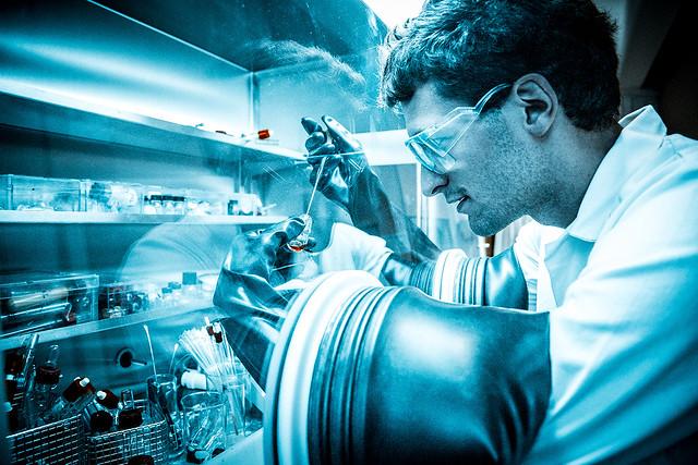 Laboratoire de Chimie Moléculaire (LCM)