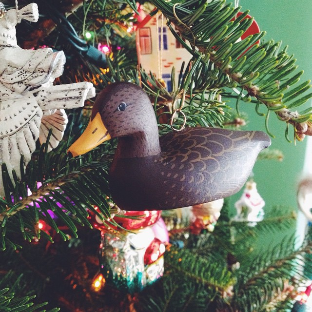 Of course my special ornament for this year is a duck. #yule #yuletree #yuletide