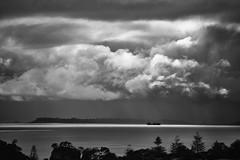 Auckland Summer 2014