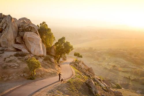 california dog riverside walk mount rubidoux
