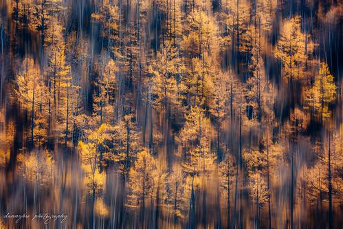 fall nature landscape mongolia gol