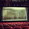 Las pantallas del festival de cine de El Cairo se apagaron el martes pasado. Es hora de cambiar de realidad.