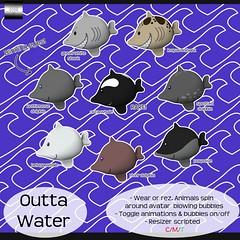 even.flow - Outta Water! Gacha