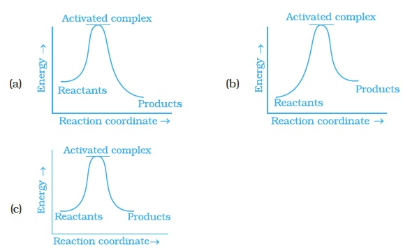 chemical kinetics questions Programming chemical kinetics: engineering dynamic reaction networks with   questions that enabled me to view my projects in different ways niles, along with .