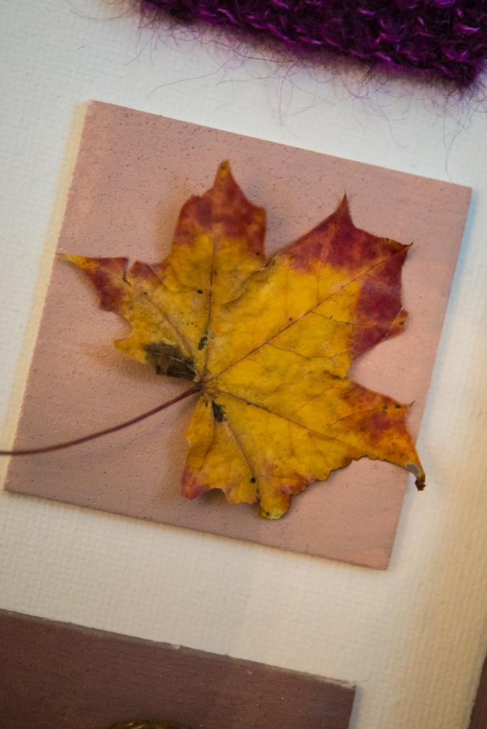 inchies, autumn