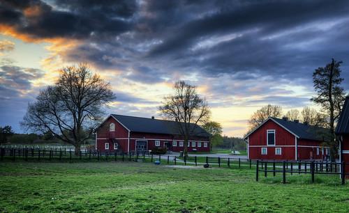 trees houses sunset sky grass clouds landscape countryside fance sweden stockholm sverige bro pastoral hdr stables lejondal lejondalsgård sivbirgersson