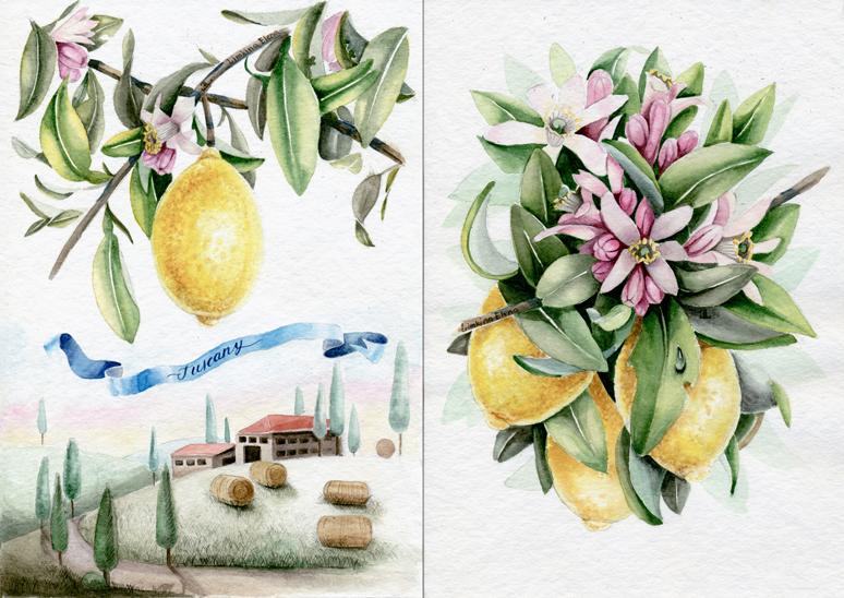 Lemon Tuscany_780
