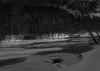 Silver Edges at Nightfall