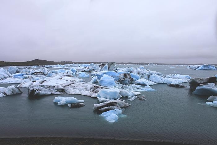 Iceland_Spiegeleule_August2014 031