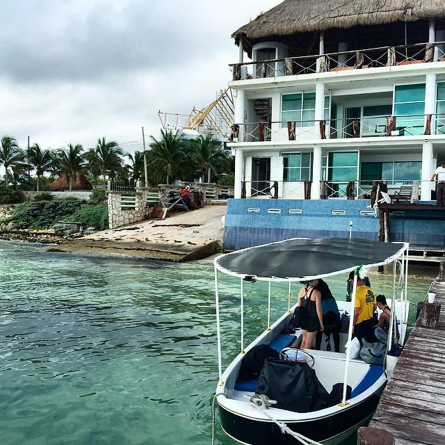 #cancun #cancunreefs #cancundiving #divecancun #scubacancun #scubadivingcancun #deeplife #deeplifedivers #deeplifemainbase